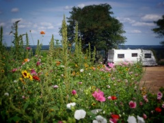 campsite Camping Chantepie