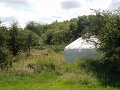 campsite South Penquite Farm