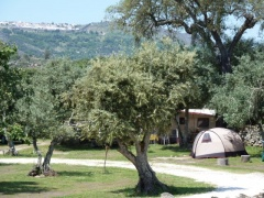campsite Camping Asseiceira