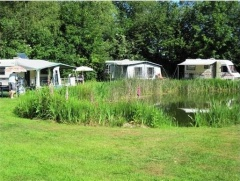 campsite camping de bomen