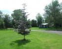 camping Mill Hill Farm Campsite