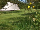 campsite AIRE NATURELLE de CAMPING KERALUIC