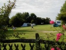 campsite camping yewtreepark